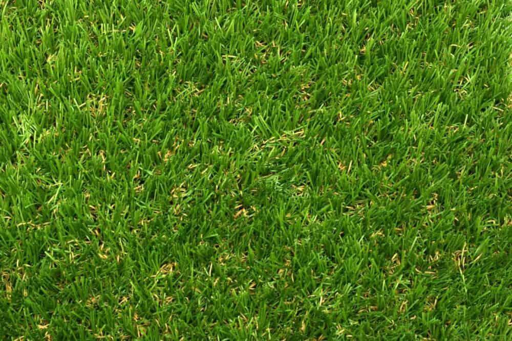 Fire Retardant Artificial Grass