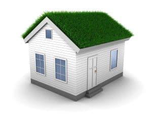 Grass on roof 3d