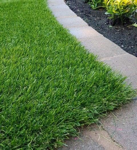 Kent Garden Low Res Crop
