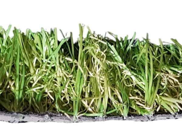 sugar grass edit